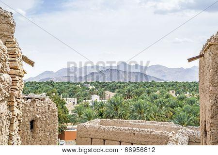 View Birkat Al Mud