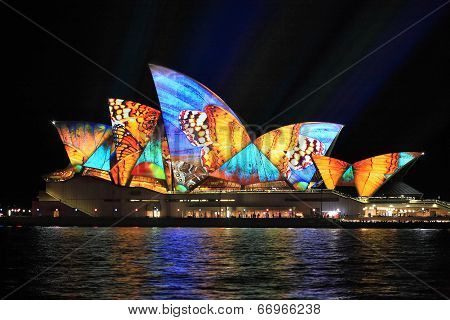 Vivid Sydney, Sydney Opera House With Colourful Butterfly Imagery
