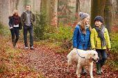 Family Walking Dog Through Winter Woodland poster