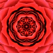 Red Mandala Concentric Rose Flower Kaleidoscope Center. Kaleidoscopic Design Pattern poster