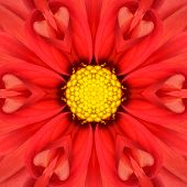 Red Mandala Concentric Dahlia Flower Kaleidoscope with Yellow Center. Kaleidoscopic Design Pattern poster