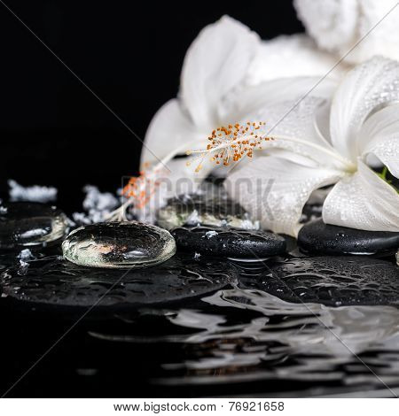 Cryogenic Spa Concept Of Delicate White Hibiscus, Zen Stones With Drops, Snow, Ice And Towels On Rip