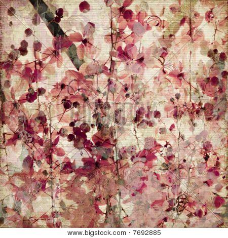 Grunge Pink Blossom Bamboo Antique Background