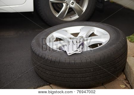 Car Tire And Gloves
