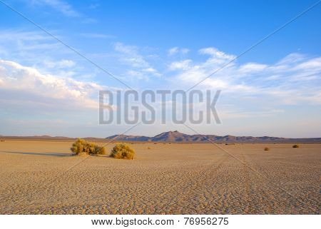 Dry Lakebed Mojave Valley