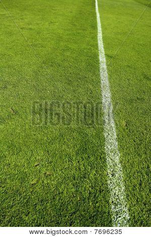 Football Green Grass Sports Field Camp Texture