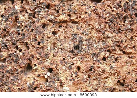 Laterite Wall