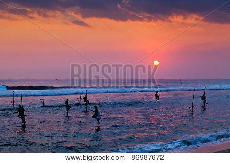 Silhouettes of the traditional stilt fishermen at sunset near Galle in Sri Lanka poster