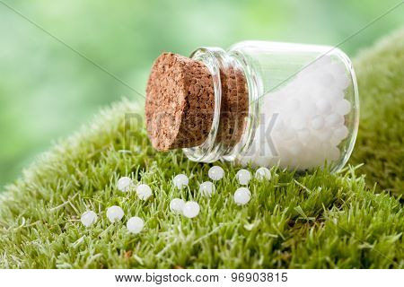 Bottle Of Homeopathy Globules On Green Moss