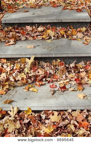 Concrete steps in park covered with fallen leaves in autumn poster