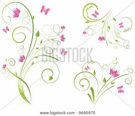 Florals Designs And Butterflies