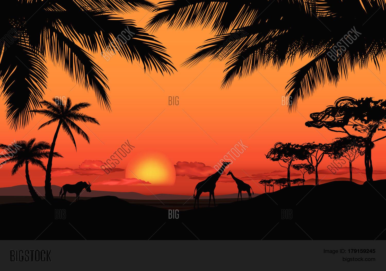 African Savanna Animals Silhouette