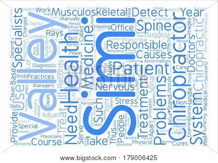 Simi Valley Chiropractor text background word cloud concept