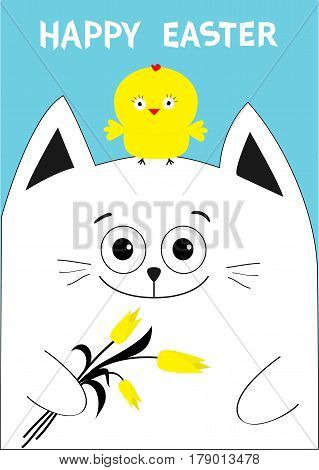 Cat holding yellow tulip flower and chicken bird. Happy Easter Greeting card. Baby chick bird friends. Cute cartoon funny character. Blue background. Flat design. Vector