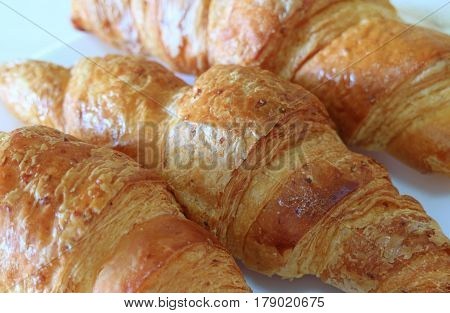 Closed up Texture of Three Fresh Whole Wheat Croissant Pastries