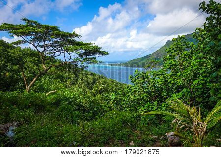 Aerial View Of Opunohu Bay And Lagoon In Moorea Island