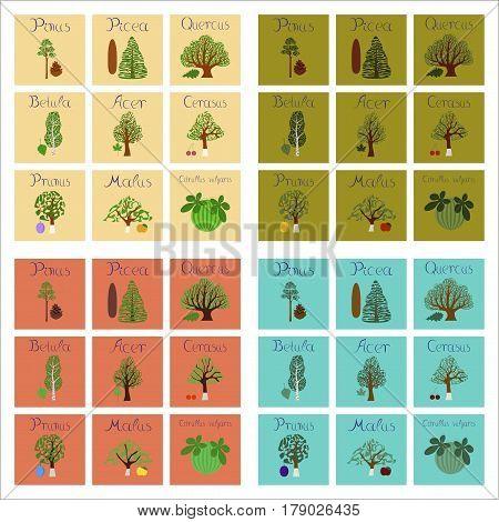 assembly of flat Illustrations nature Pinus Picea Quercus Betula Citrullus Malus Prunus Cerasus Citrullus Populus