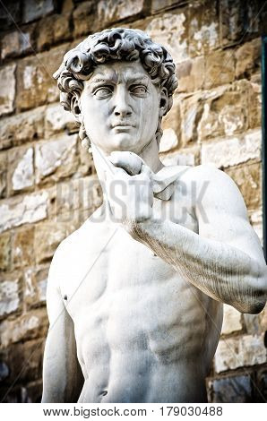 Michelangelo's David Portrait, Statue in Florence Italy.