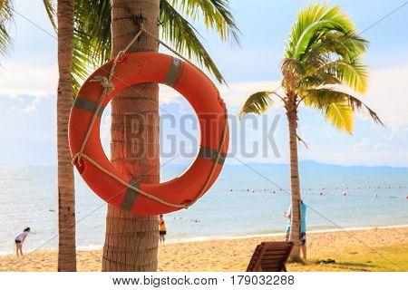 Life Buoy on sand beach near sea or ocean.