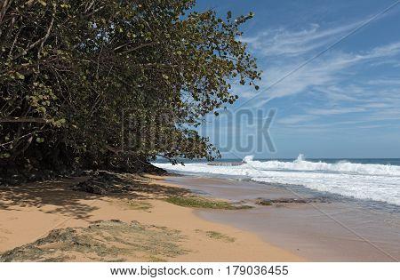 Coast with rock at Punta Manzanillo in Gandoca Manzanillo National Wildlife Refuge, Costa Rica