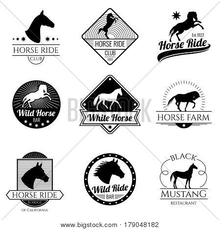 Racing horse, running mare vector vintage logos and labels set. Emblem with horse stallion, illustration of logo with mustang horse
