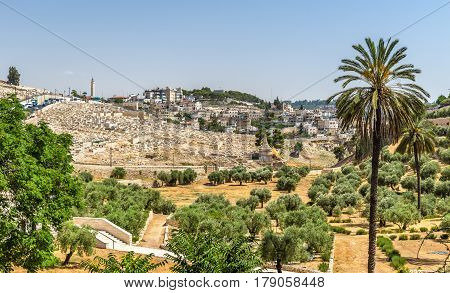 Church of All Nations in the Kidron Valley - Jerusalem, Israel