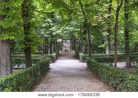 Madrid (Spain): the Park of Buen Retiro at evening