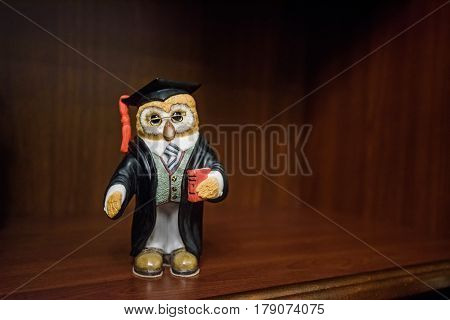 Closeup statuette of smart owl on shelf with wooden background