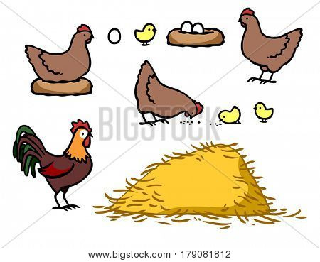 Chicken with cock and chicks as farm family cartoon illustration