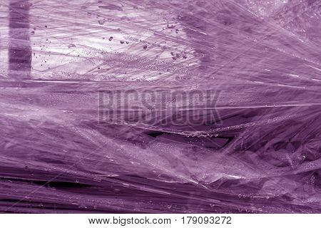 Violet Color Plastic Wrap Surface.