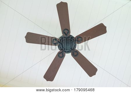 Electric ceiling fan at the room interior in house