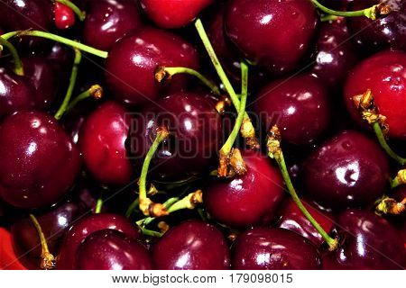 Sweet red cherry. Fresh cherry background. Cherry close-up