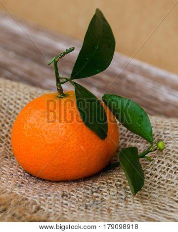 Mandarin Background