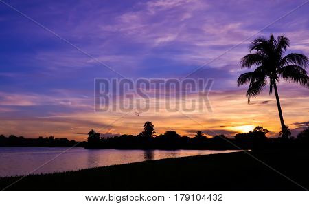 Miami Silhouette Sunset with Palm Tree over a Lake