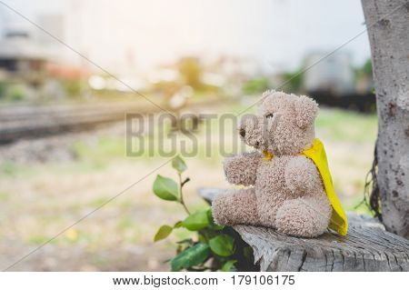 A lonely brown bear sitting at the base railway station