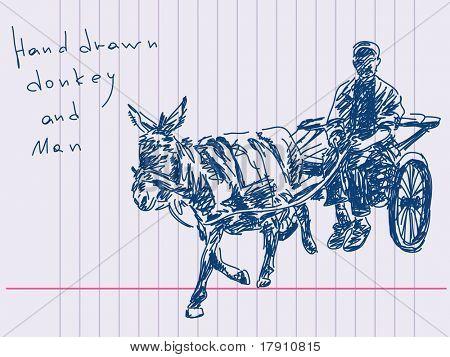 Hand drawn donkey and man Vector