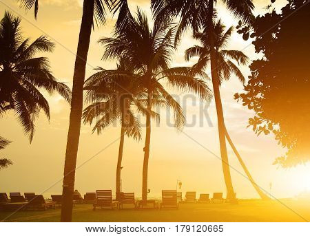 Chaise-longues on a beach of Indian ocean, Sri Lanka