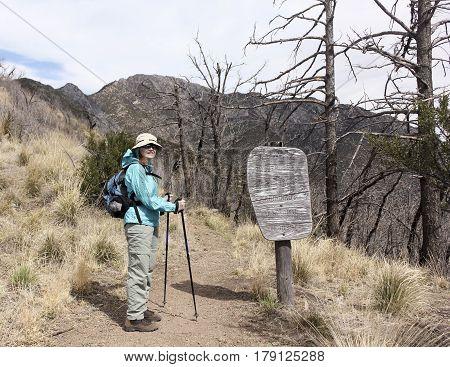 A Hiker on the Huachuca Mountain Crest Trail near Sierra Vista Arizona. poster