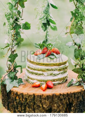 The close-up photo of the stump hanging on the herbs and the green sponge cake with strawberries and mint is located on it. The forest composition.