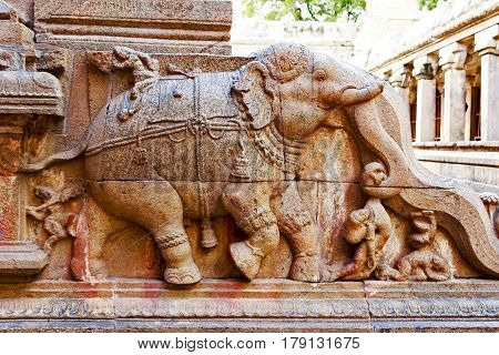 Architecture of an elephant carved stone joined together at Brahadeeshwara temple captured at Tanjore, India on January 28th, 2017