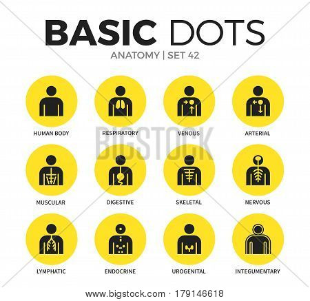 Anatomy flat icons set with humans body systems isolated vector illustration on white