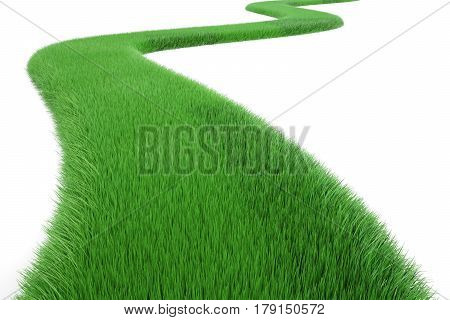 Green Grass Way 3D rendering isolated on white background