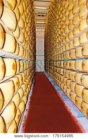 The Parmesan Storage