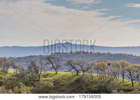 Hazy Oak Woodlands and Hilltops above Santa Clara Valley. Joseph D Grant County Park, Santa Clara County, California, USA.