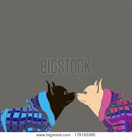 dog vector graphics funny little pet clothing