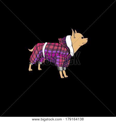 dog vector small drawing illustration animal clothing