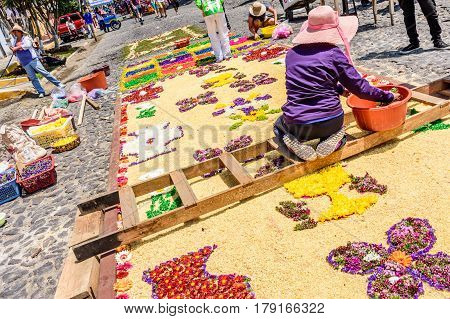Antigua, Guatemala - March 26 2017: Locals make dyed sawdust & flower procession carpets during Lent in colonial town with most famous Holy Week celebrations in Latin America.