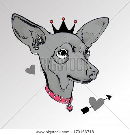 dog vector small drawing illustration pet animal