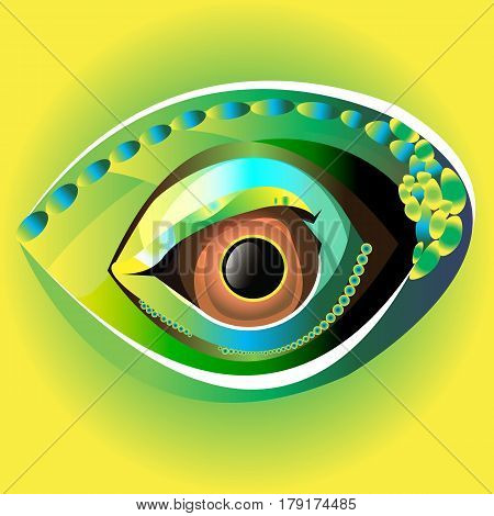 vector illustration eye black eyeball look white