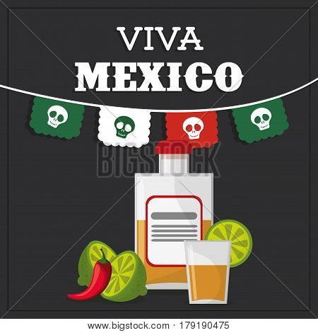 viva mexico greeting image vector illustration eps 10